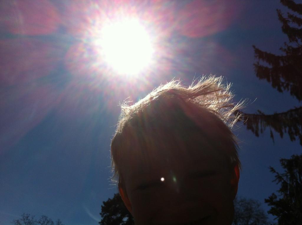 066 Sunshine Boy
