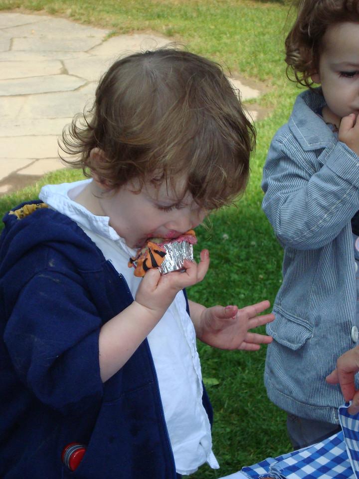 032 Olly Enjoying a Tiger Cupcake