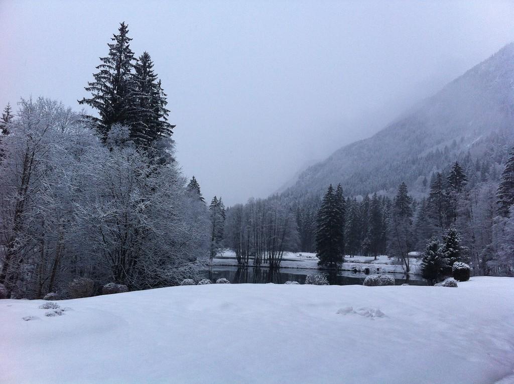 017 Snowy Chamonix