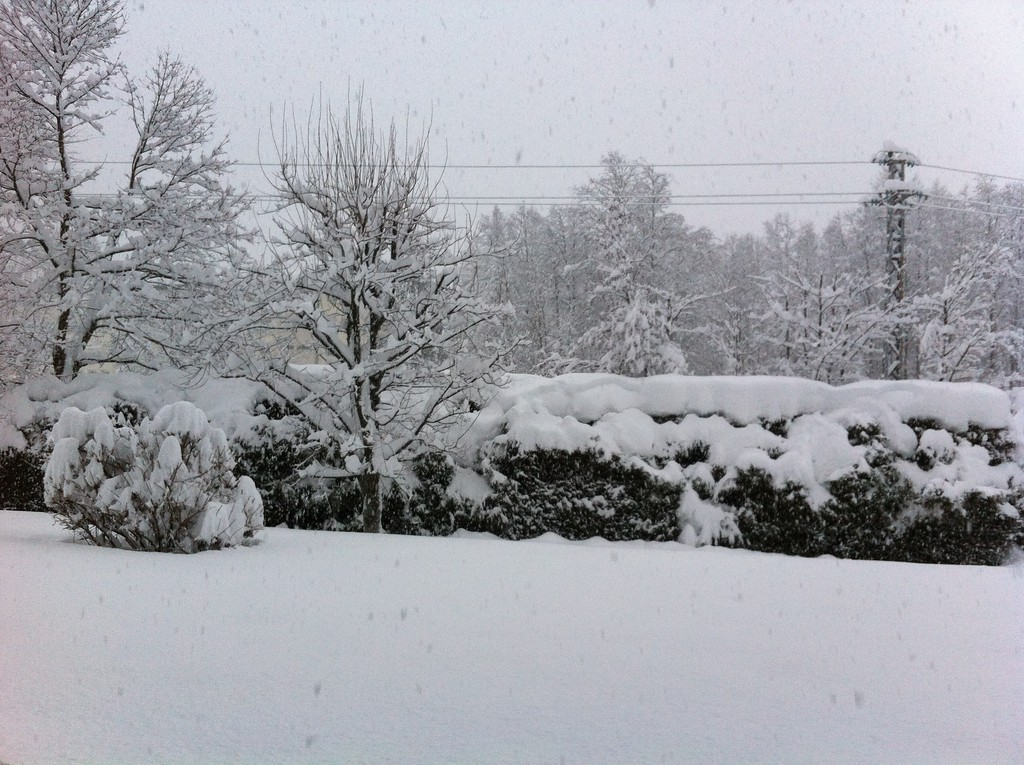 It just kept snowing from the 30th through New Year's Eve - it was crazy!