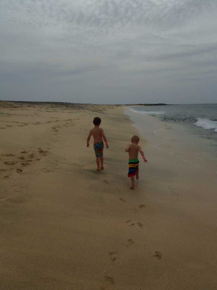 The boys & I went on an adventure to go find the volcanic rocks...